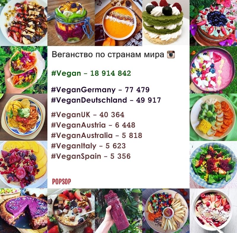 Popsop_Vegan_rus