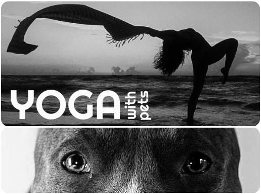 YogaPets