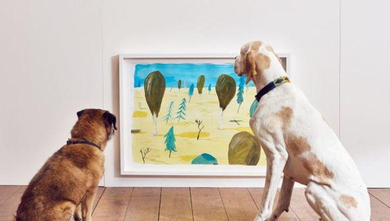 dog-exhibition-6