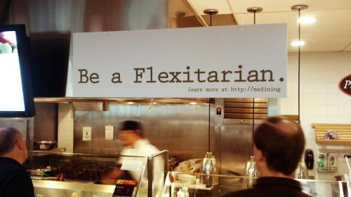 fleks_1
