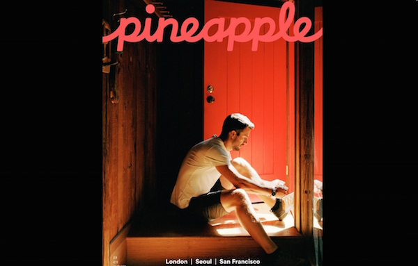 airbnb_pineapple