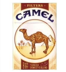 camel_new.jpg
