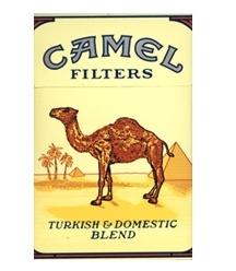 camel_old1.jpg