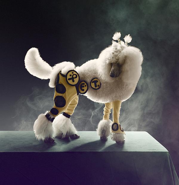 carlsberg_premium_pet_collection_dogs_05