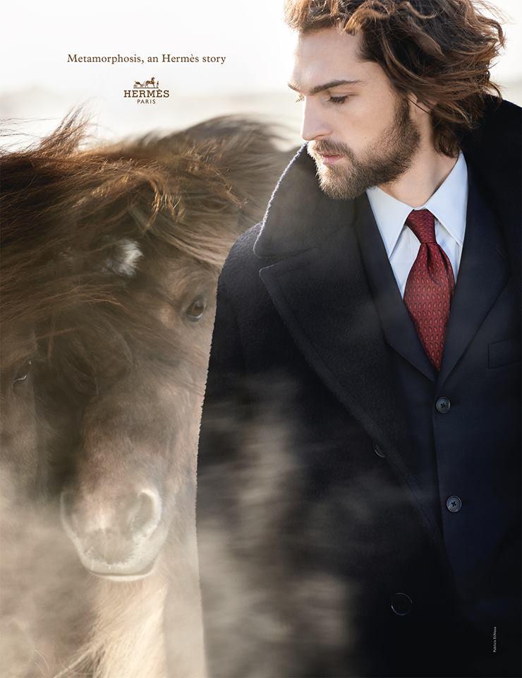 hermes_horses_2014_04