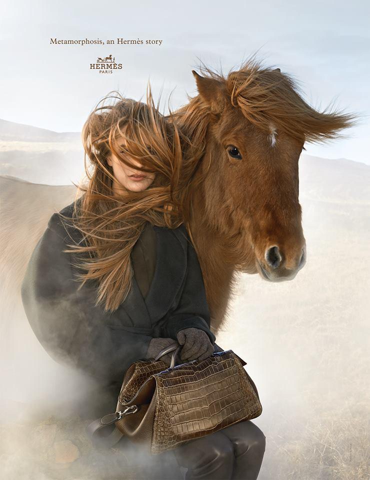 hermes_horses_2014_10